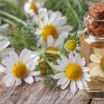 Cómo Tratar La Eyaculación Precoz: Remedios Herbales
